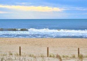 tiff-beach-wave.jpg