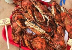 steamed-crabs.jpg