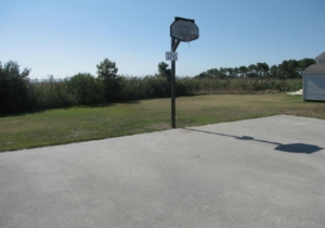 basketball-half-court.jpg