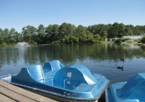 paddle-boats-free-to-use.jpg